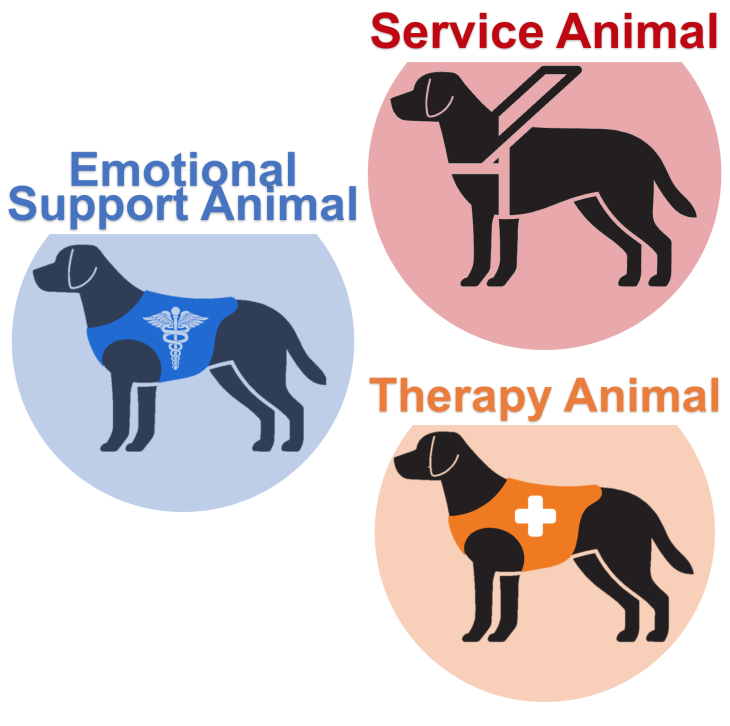 service-support-therapy-dog-animal-icon